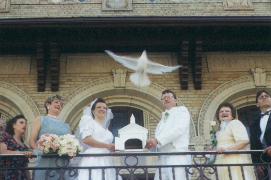 Doves released at a recent wedding.